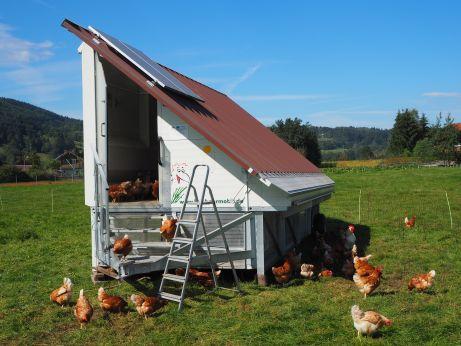 Unser Hühnermobil