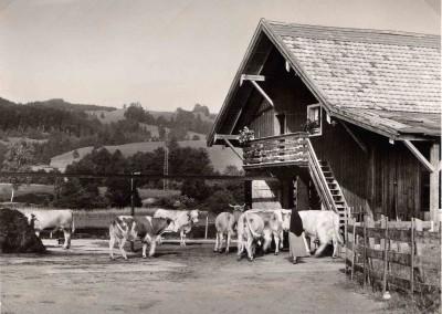Der Sommerstall 1942 gebaut, 1951 erweitert