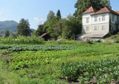 Gartenbau_09