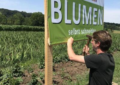 Blumenfeld_3