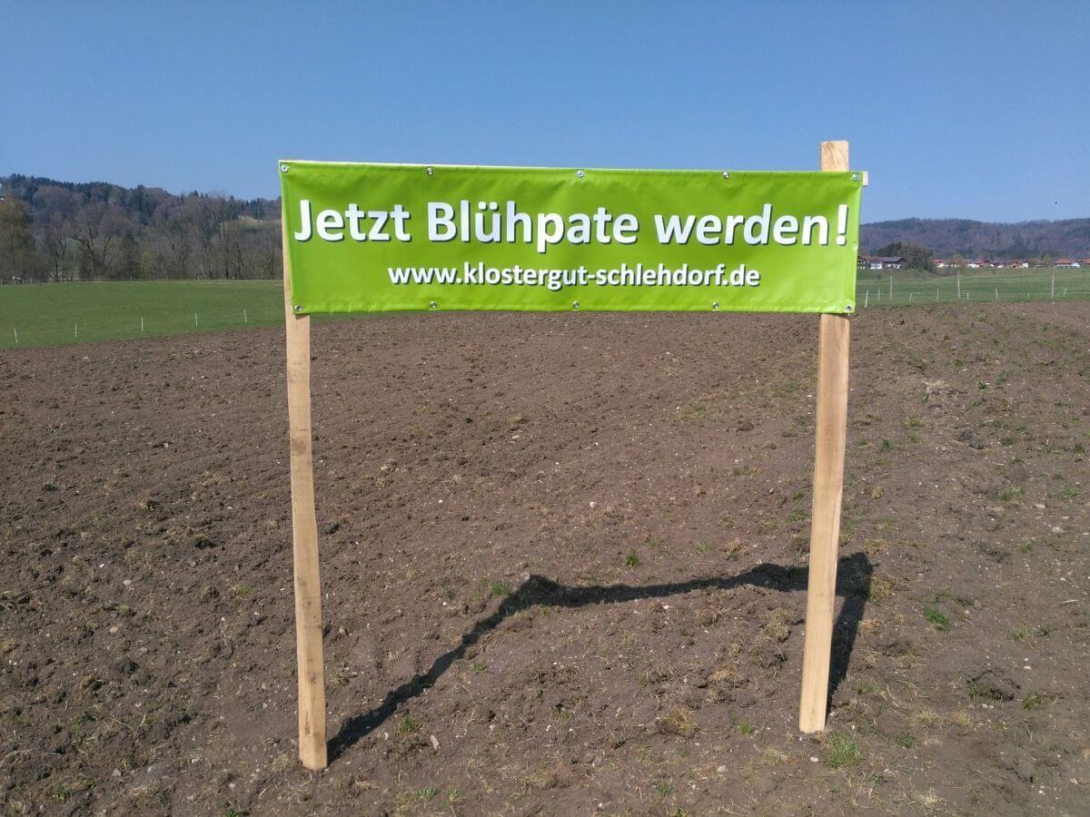Blühwiese_Banner_kl